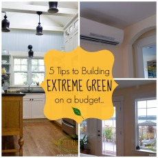 5 tips to building extreme green on a budget